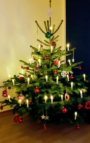 Frohe Weihnachten Wünsche Ich Dir Und Deiner Familie.Frohe Weihnachten Einen Guten Rutsch Rosenblut